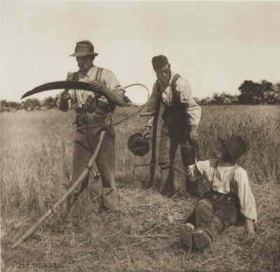 1890_photo_-_in_the_barley_harvest_-_england_by_peter_henry_emerson.jpg
