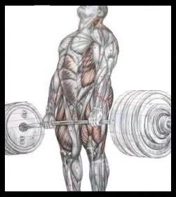 deadlift._front.jpg